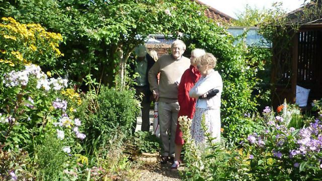 Harleston residents get set to unlatch their gates and open their gardens |  Eastern Daily Press